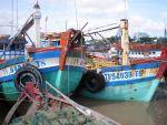 Phối hợp quản lý tàu cá khai thác trên biển