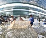 Tái cơ cấu thủy sản: Tất yếu dựa vào khoa học công nghệ