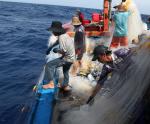 Tạo động lực mạnh mẽ cho ngư dân vươn khơi