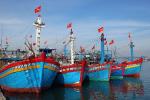TP. Hồ Chí Minh: Giảm dần tàu cá khai thác ở vùng biển ven bờ