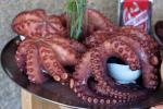 Tây Ban Nha giảm xuất khẩu mực, bạch tuộc