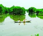Tôm - rừng và mục tiêu tăng trưởng xanh