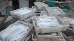 Nghệ An: Ngư dân trúng đậm cá hố