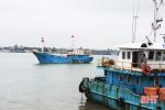 """Cùng ngư dân cả nước, Hà Tĩnh quyết liệt khắc phục """"thẻ vàng"""""""