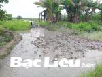 Cải tạo ao nuôi tôm phải gắn với bảo vệ môi trường