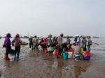 Nam Định: Vụ cá Nam thắng lợi