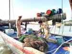 Quảng Ninh tăng cường bảo vệ nguồn lợi thủy sản