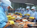Việt Nam và Ấn Độ còn nhiều tiềm năng xuất khẩu tôm sang Canada