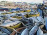 Philippines tăng nhập khẩu cá ngừ