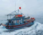 Xử lý nghiêm các tàu cá vi phạm khai thác IUU