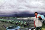 Skretting Vietnam: Đồng hành cùng bà con trong mùa mưa bão