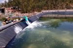 Quy chuẩn kỹ thuật sản phẩm xử lý môi trường nuôi thủy sản