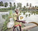 Ấn Độ: Ứng dụng công nghệ nuôi tôm bền vững