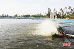 Hà Tĩnh hỗ trợ cơ sở nuôi tôm trên cát, thâm canh bãi triều hàng tỷ đồng