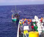 Tình người trên biển