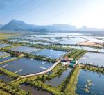 Thủy sản thế giới hướng đích bền vững