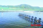 Xã Hòa Lộc: Xây dựng các mô hình nuôi thủy sản hiệu quả