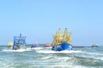 Bình Định: Khi ước mơ ngàn đời của ngư dân thành hiện thực