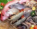 Sức mua thấp, nhiều loại thủy sản giảm giá