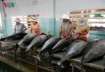 Giá trị xuất khẩu thủy sản 2 tháng đầu năm đạt 1,11 tỷ USD