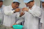 Dấu ấn con tôm trong hành trình 60 năm phát triển của ngành thủy sản