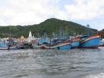 Vũng Tàu có nhiều giải pháp ngăn chặn tàu thuyền đánh cá xâm phạm vùng biển nước ngoài