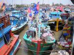 Giao hạn ngạch khai thác thủy sản vùng khơi