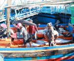 Bình Định: Mạnh tay chống khai thác IUU