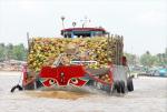 Những kiểu ghe, xuồng chở nông sản trên sông nước miền Tây