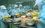 Khánh Hòa: Gần 83.000 lao động trong lĩnh vực thủy sản