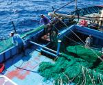 Nhiều tiến bộ kỹ thuật mới trong lĩnh vực thủy sản