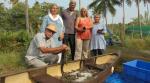 Ấn Độ: Hồi sinh ngành tôm sú tại Kerala