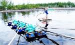 Lạng Sơn: HTX Lân Vực gia tăng giá trị nhờ nuôi trồng thủy