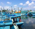 Mở đường biển cho thủy sản miền Tây
