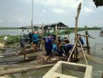 Đồng Tháp: Giá cá tra lao dốc, người nuôi đứng ngồi không yên