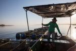 Brazil: Tăng hỗ trợ tín dụng và giá tham chiếu thủy hải sản