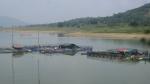 Phát triển nuôi trồng thủy sản trên hồ Thác Bà, hướng tới xuất khẩu