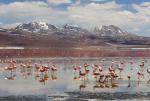 kỳ ảo cánh đồng muối lớn nhất thế giới