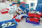 Mua bán, chế biến, vận chuyển hải sản: Khó quản lý, kiểm soát