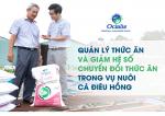 Quản lý thức ăn và giảm hệ số chuyển đổi thức ăn trong vụ nuôi cá điêu hồng