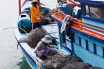 Tăng cường giám sát tàu cá vi phạm vùng biển nước ngoài