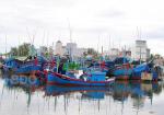 Bình Định: Đề nghị cấp thêm hạn ngạch giấy phép khai thác thủy sản
