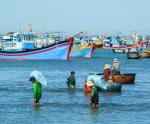 Gỡ khó trong lắp thiết bị giám sát tàu cá