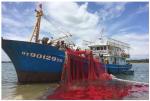 Ngư dân vỡ nợ vì tàu vỏ thép
