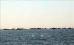 Nuôi thủy sản tại khu vực biển Bình Sơn - Ninh Chữ đến hết mùa gió Tây Nam
