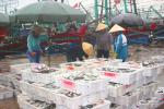 Nghệ An: Ngư dân tiêu thụ hải sản trước khi áp thấp nhiệt đới mạnh lên thành bão
