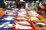 Bình Thuận: Sản lượng hải sản nhiều, dù cuối vụ cá nam