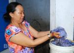Bình Định: Mùa sứa sen đến sớm