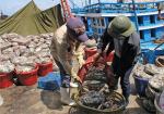 Khắc phục bất cập trong khai thác thủy sản