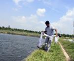 Bà Rịa - Vũng Tàu: Giá tôm tăng vọt, nhiều ngư dân trúng lớn